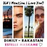 Estelle Maskame - DIMILY - Rakastan – Did I Mention I Love You?